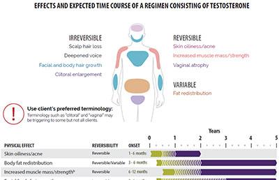 Testosterone Regimen Guide